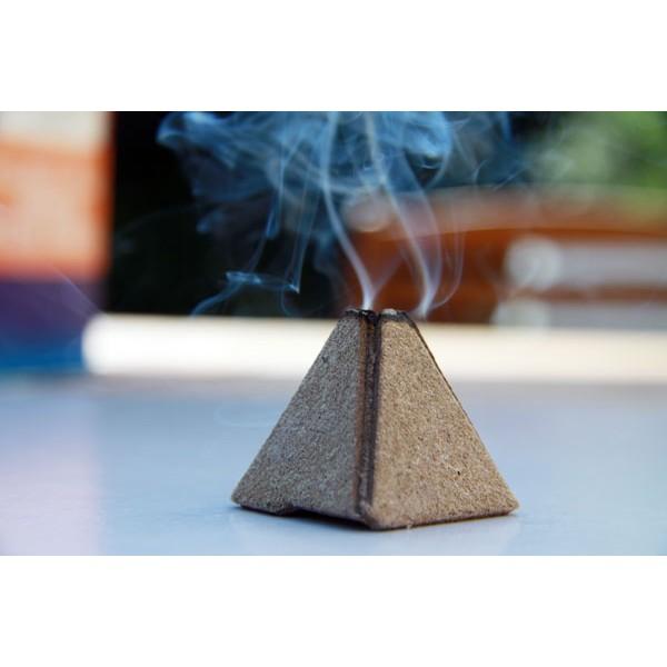 traitement anti puce les fumig nes sont au premier rang. Black Bedroom Furniture Sets. Home Design Ideas
