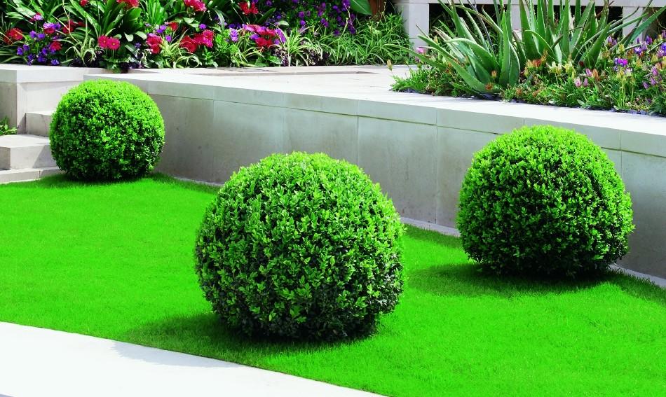 obtenir une belle pelouse verte et en bonne sant steles. Black Bedroom Furniture Sets. Home Design Ideas